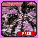 Tropical Sunset Pool LWP icon