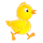 Catchy Chick icon