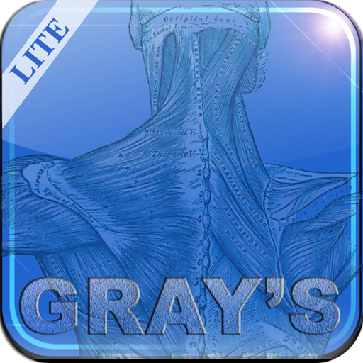 Gray's Anatomy Lite