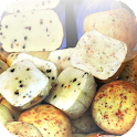 Fromage icon