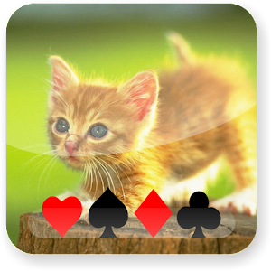 Kitten Solitaire for PC and MAC