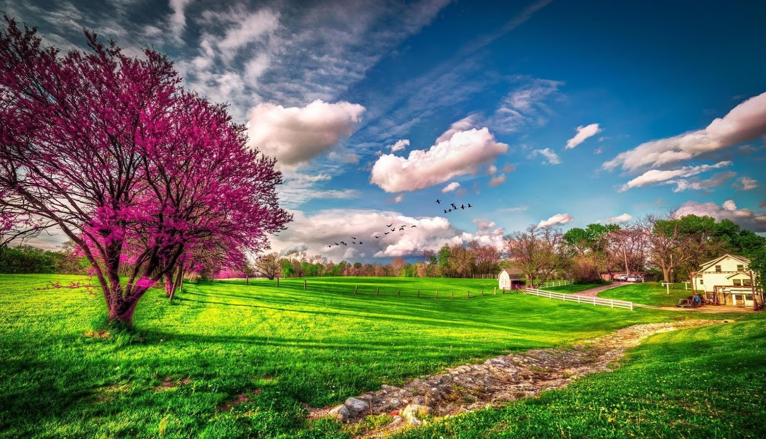spring wallpaper android apps on google play
