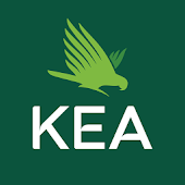 New Zealand KEA Travel Guide