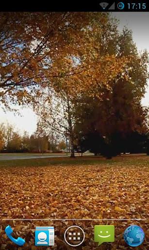 【免費個人化App】Falling Leaves Live Wallpaper2-APP點子