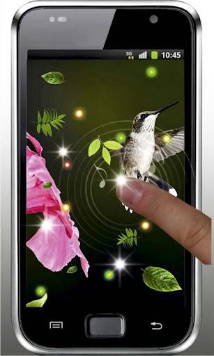 【免費個人化App】Colibri Amazing live wallpaper-APP點子