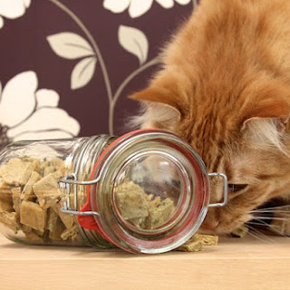 Chewy Cat Treats for Cats Recipe