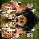 Baby Deer Live Wallpaper