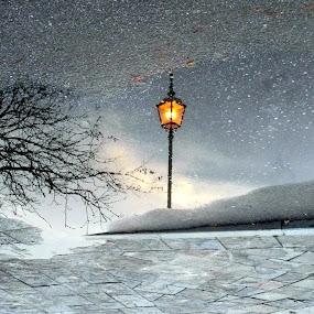 alone by Marta Kolczyńska - City,  Street & Park  Street Scenes (  )