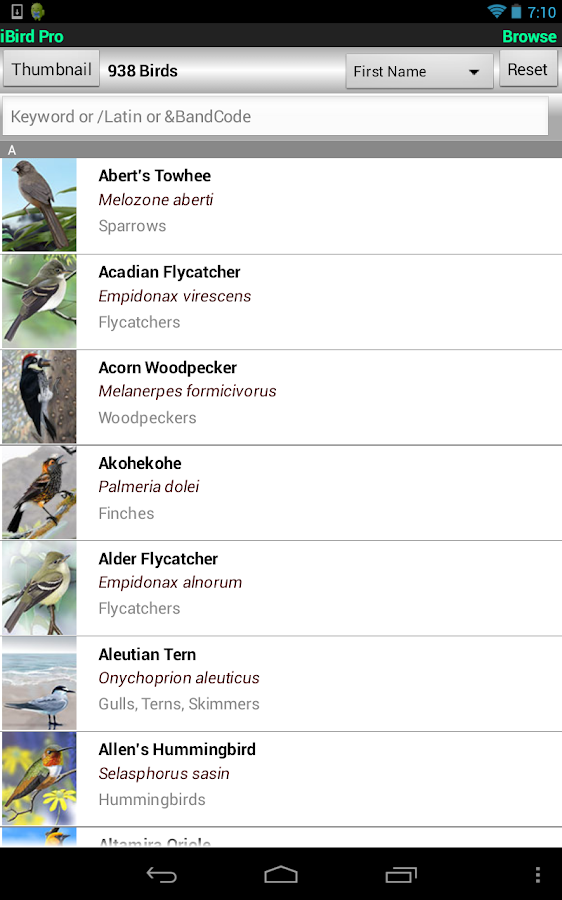 iBird Pro North America- screenshot