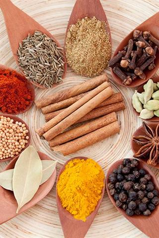 Sauer's Spices