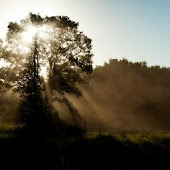 [AL] Sunlight Through Mist