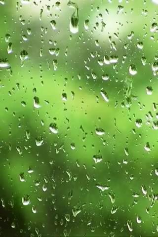 Rain drops screen Live Wallp
