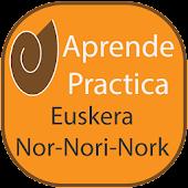 Euskera Nor Nori Nork