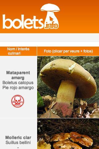 Bolets.info la guia de bolets- screenshot