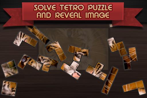 Tetro Puzzle