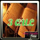 Surah 3 Qul dan Terjemahan icon