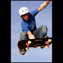 Skateboarding illustrated logo