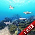 Dolphin Ocean 360° Trial icon