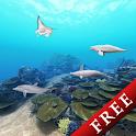 Dolphin☆Ocean 360° Trial icon
