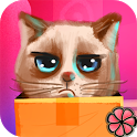 Cats Song icon