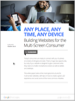 Building Websites for the Multi-Screen Consumer white paper
