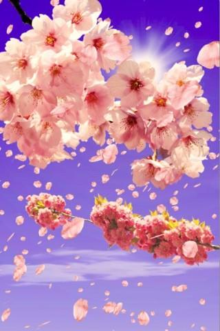 3D Sakura Live Wallpaper HD - screenshot