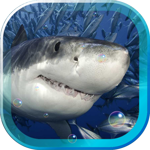 Shark Oceanic live wallpaper LOGO-APP點子