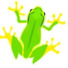 frog LiveWallpaper icon