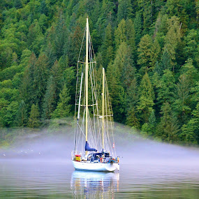 Spooky Anchor by  J B  - Transportation Boats ( at anchor, fog, sailing craft sailboat, the great bear rainforest )