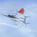F16 Fighting Falcon Flight Sim icon