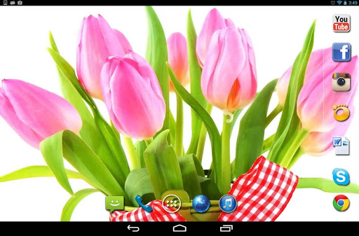 【免費個人化App】Springs Flowers Tulips HQ LWP-APP點子