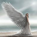 Beach Angel Live Wallpaper icon