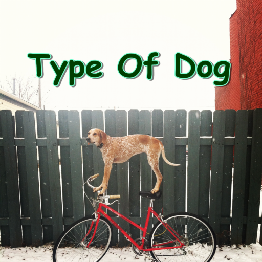 Type Of Dog 書籍 App LOGO-APP試玩