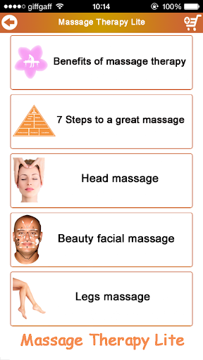Massage Therapy Lite