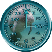 Manatee 4 Analog Clock