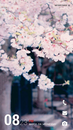 벚꽃 버즈런처 테마 홈팩