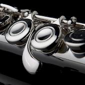 Easy Flute - Flute Tuner