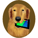 Golden Retriever icon