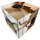 Slideshow Cube Wallpaper icon