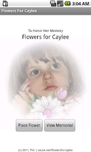 Flowers For Caylee Anthony - screenshot thumbnail