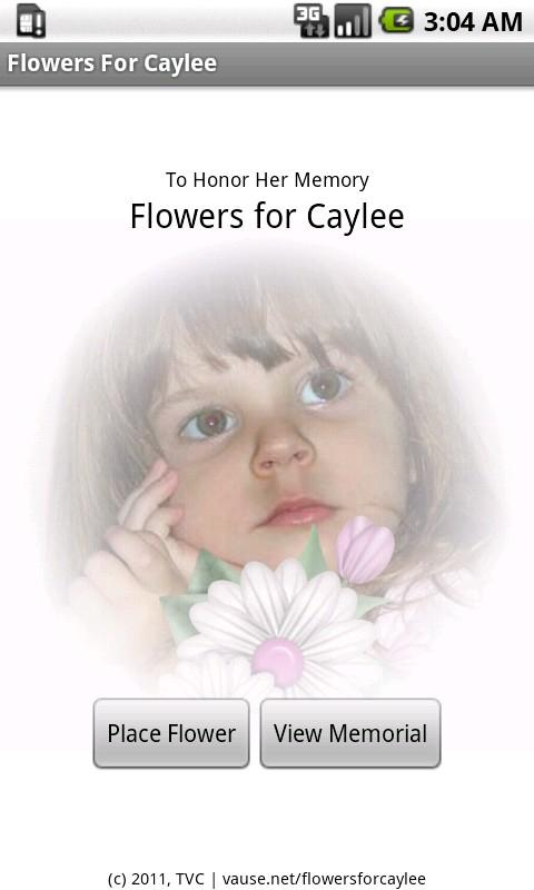 Flowers For Caylee Anthony - screenshot