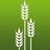 IQ-Plant