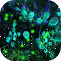 Firefly Forest Live Wallpaper icon