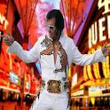 Steve Brandes – Elvis Artist logo