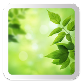 Leaves - Bokeh Live Wallpaper
