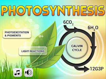 Biology Photosynthesis L- screenshot thumbnail