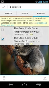 Great Koala Count- screenshot thumbnail