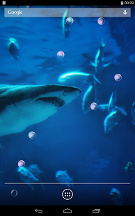 Angry Shark Live Wallpaper - screenshot thumbnail