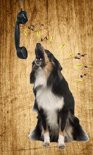 狂吠的狗的聲音