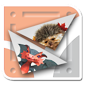 AR puzzle: Dragon and Hedgehog